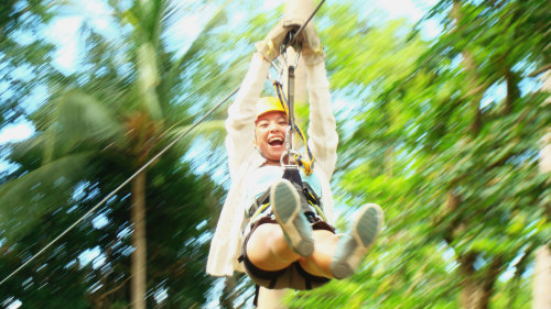 Sky Fox Adventure Park Tour with Transfers - 10.00am