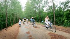 Full-Day Tour of Koh Yao Noi with Bike Ride & Lunch