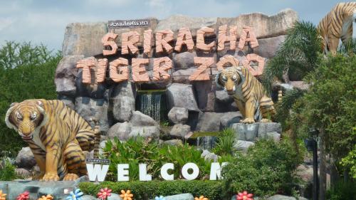 Tiger Zoo Park PM