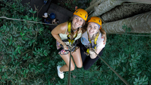 Flight of the Gibbon Chiang Mai, Zipline Adventure