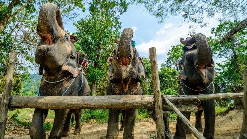 Khao Lak Day Trip