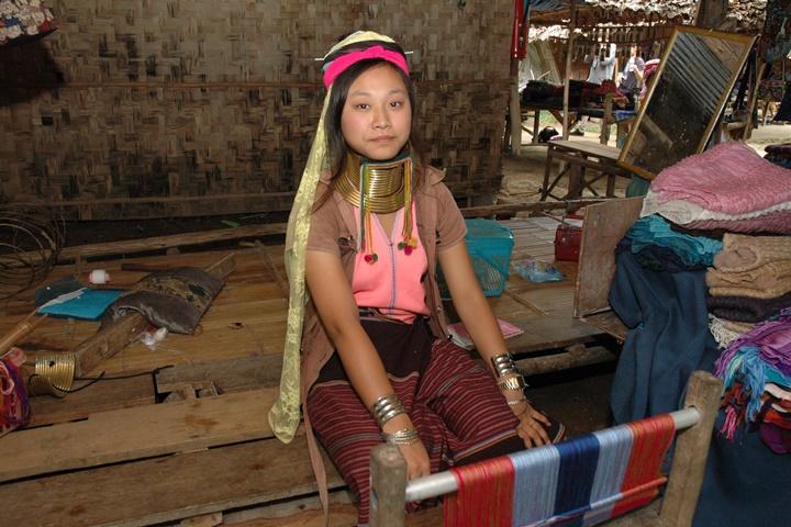 Doi Mae Salong Mountain & Padong Long-Neck Hill Tribe Tour