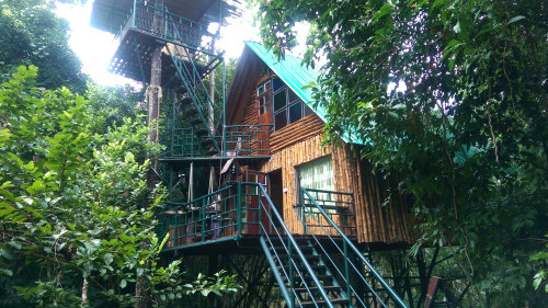 2D/1N Khao Sok Safari At Treehouse