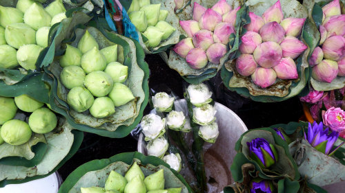Buddhist Monks Almsgiving & Flower Market Tour