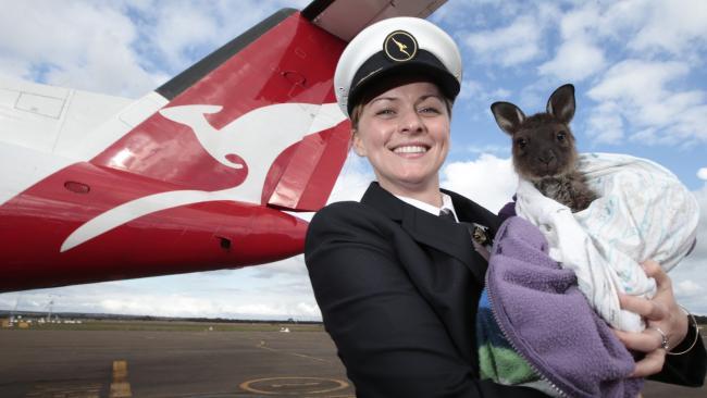 4wd Tours - Best of Kangaroo Island - Qantas Departure