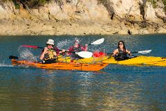 Southern Blend  Kayak and Walk