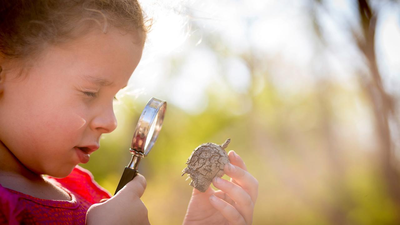 WHITEMAN WOYLIE - Environmental Education Programs