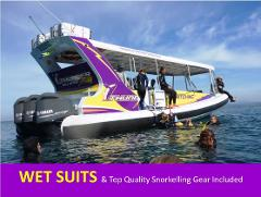 MONTAGUE ISLAND NPWS Guided Discovery Tour & SEAL SNORKELLING COMBO (Wetsuits & Snorkelling gear included FREE) ***Most Popular Tour***