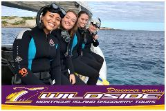 Mid Morning Snorkelling with Seals & ECO 1 Adventure, Discover your Wildside! (Wetsuits & Snorkelling gear included FREE)