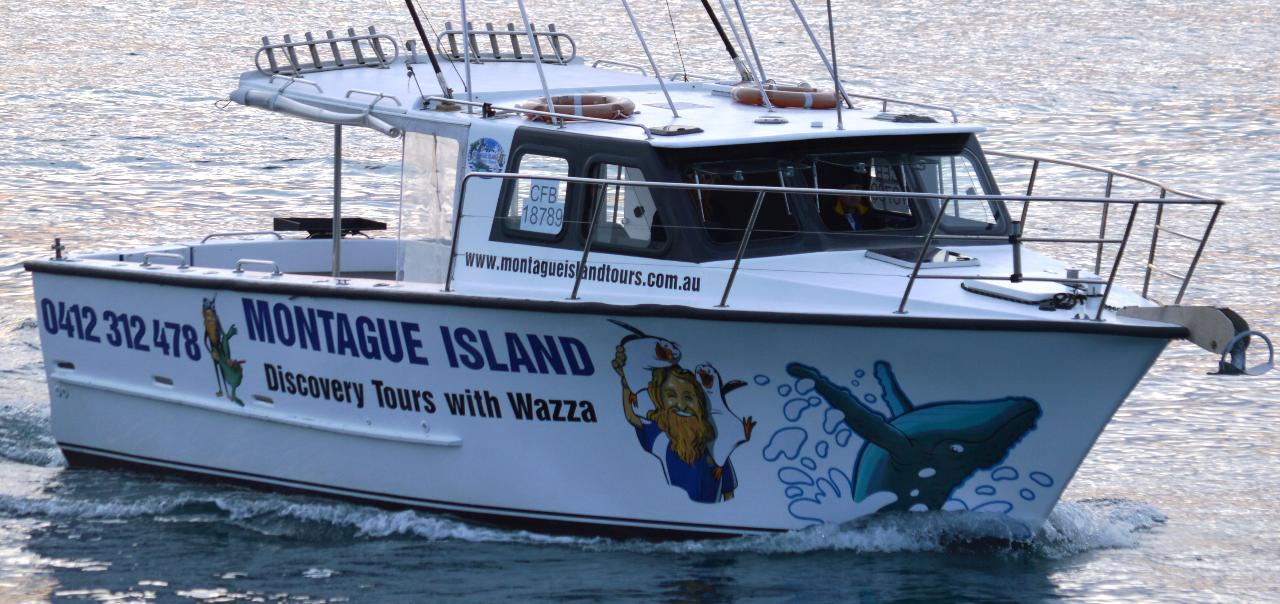 Morning Reef Fishinig & Kingfish Private Charter ( Book the Boat for yourself or a group of friends)