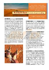 Red Earth Oasis  & The Top End