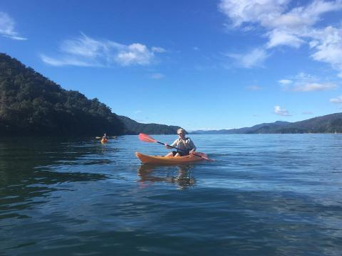 Sit on Top Kayak hire Half day