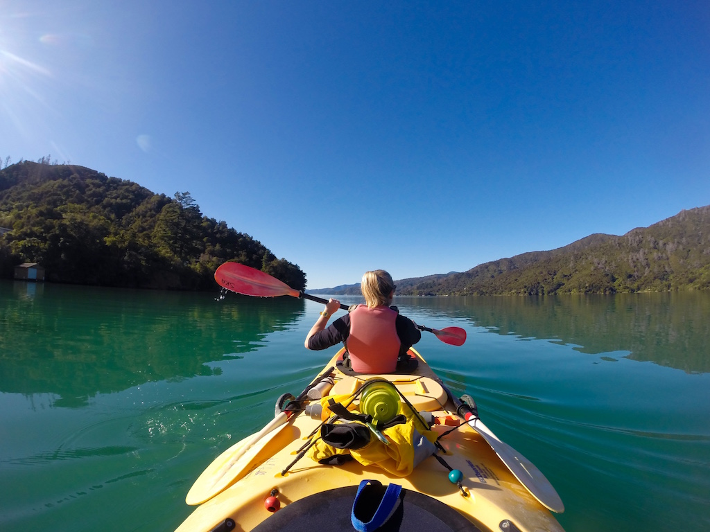 Half day Guided Sea Kayak