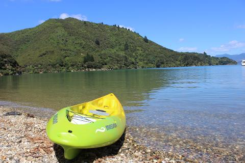 Sit on Top Kayak Hire - Adult