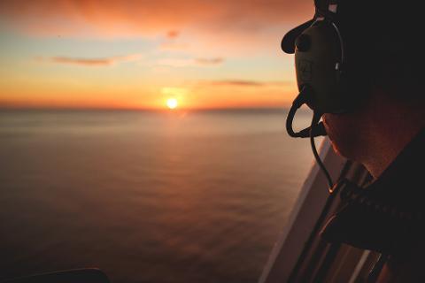 """South Pacific Whale Watch """"Ocean Safari"""""""