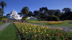 Guided Tour - Golden Gate Park