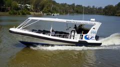Koala Express - RETURN CRUISE WHICH INCLUDES ENTRY INTO LONE PINE KOALA SANCTUARY