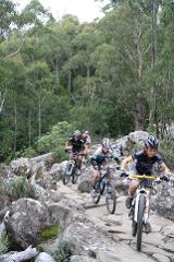 Mt Wellington North South Track