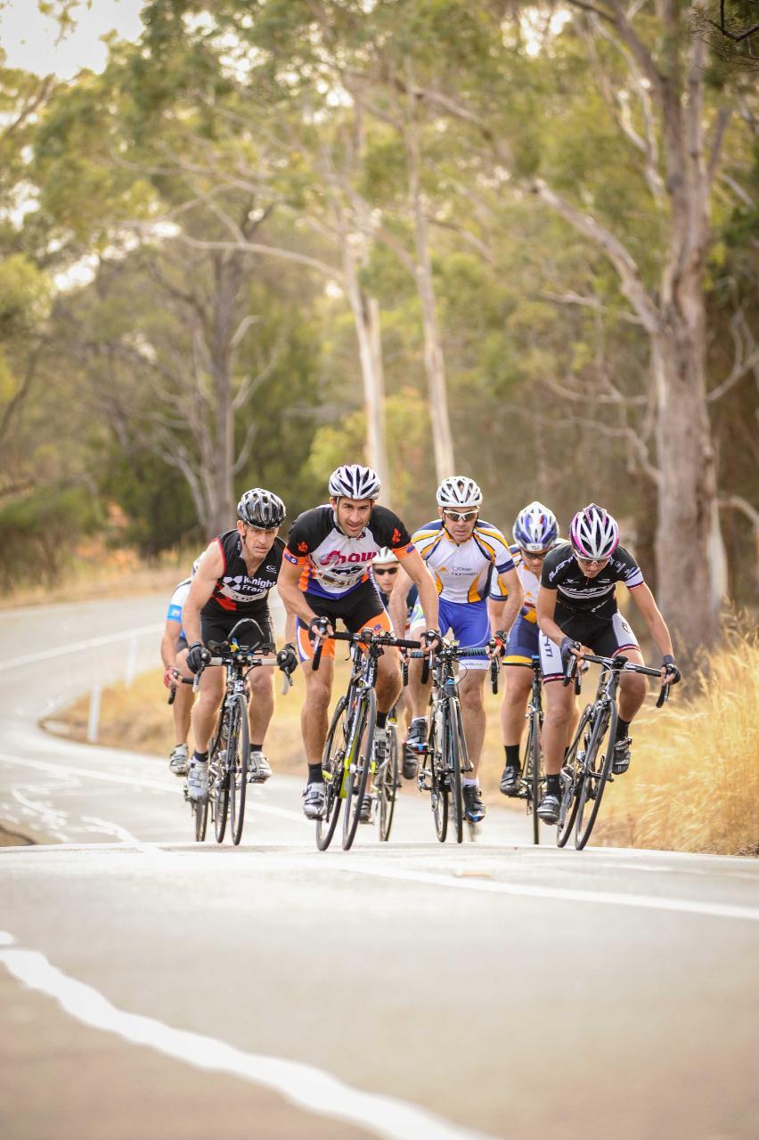 Tasmanian 3 Day Road Bike Tour