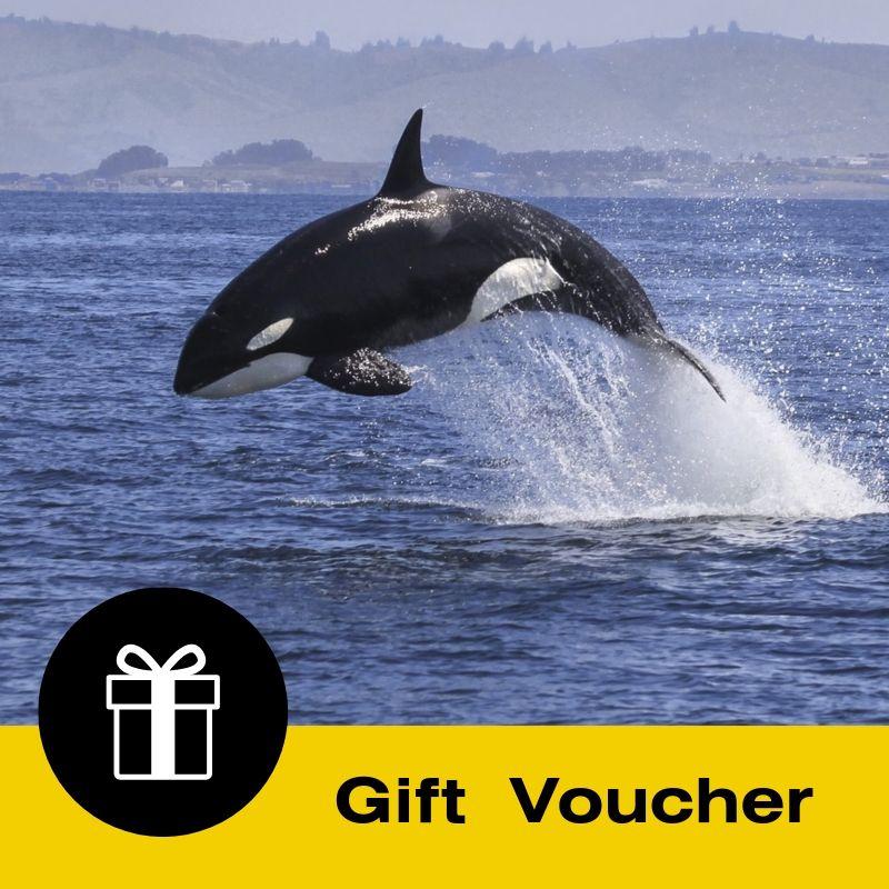 Gift Voucher: Island & Wildlife Cruise  - Full day