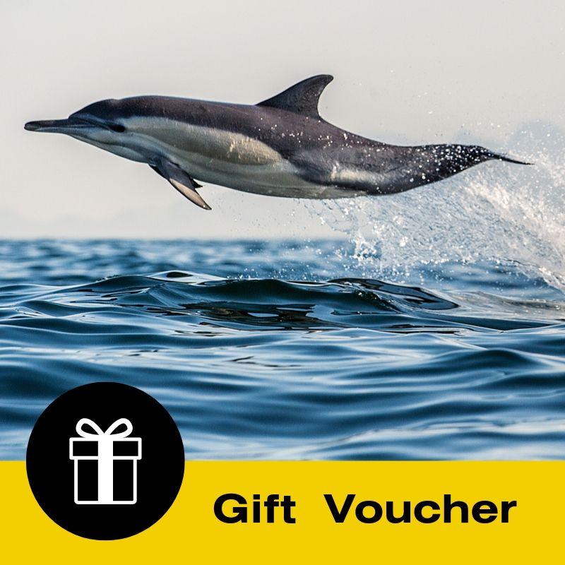Gift Voucher: Dolphin & Wildlife Cruise - Half Day