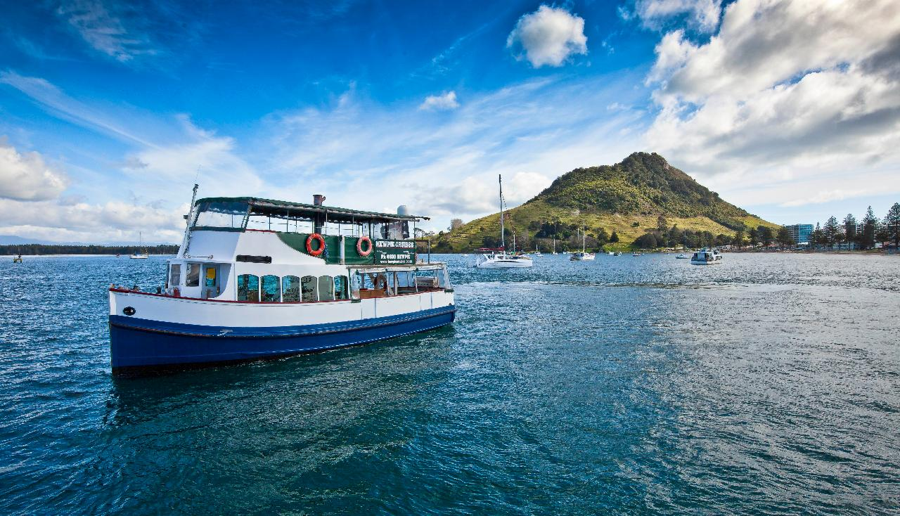 One Hour Scenic Harbour Cruise from Mount Maunganui