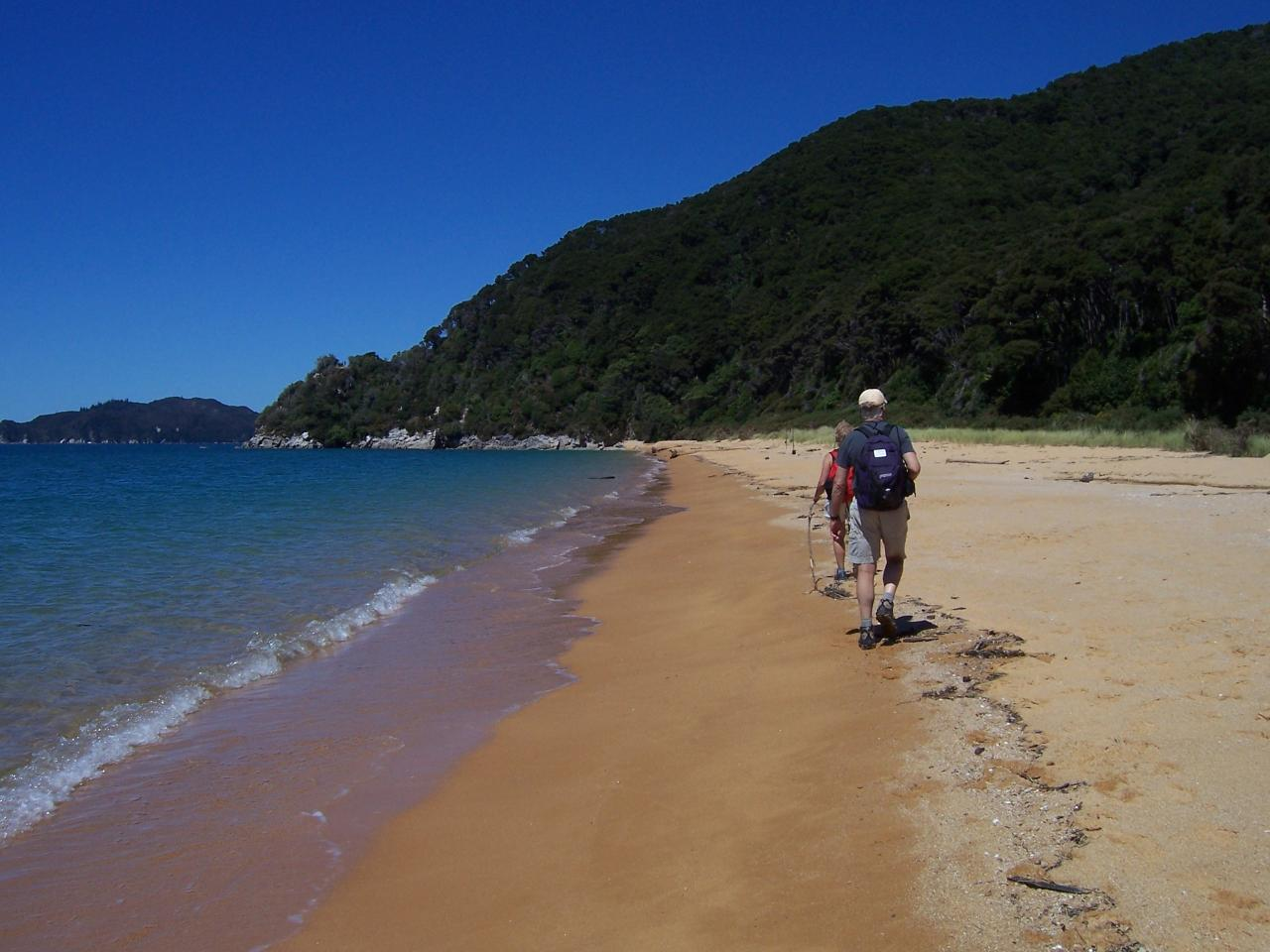 Abel Tasman 1 Day Guided Walk