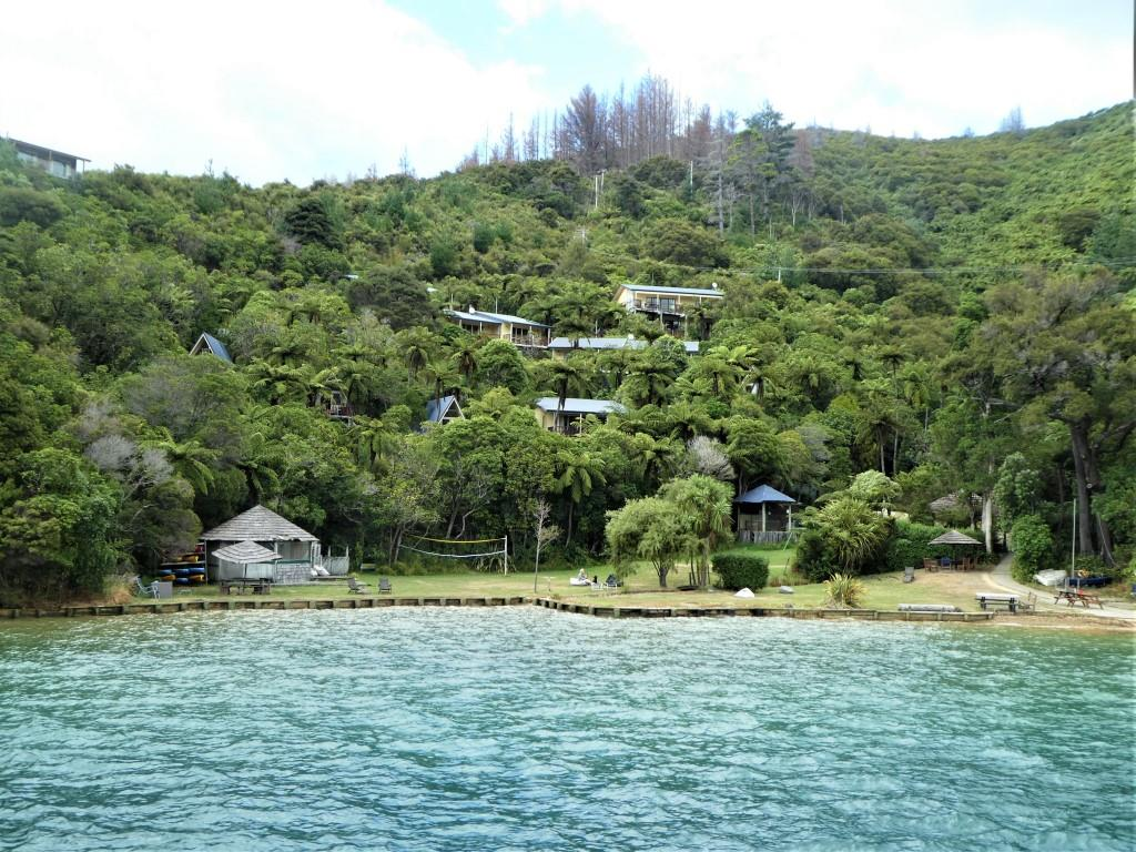 Queen Charlotte Track - 3 Day Standard Independent Walk - Furneaux Lodge and Punga Cove