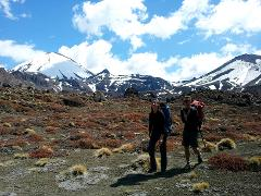 Tongariro Crossing 1 Day Guided Walk - Private