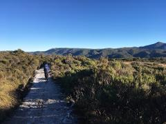 Heaphy Track 5 Day Guided Walk