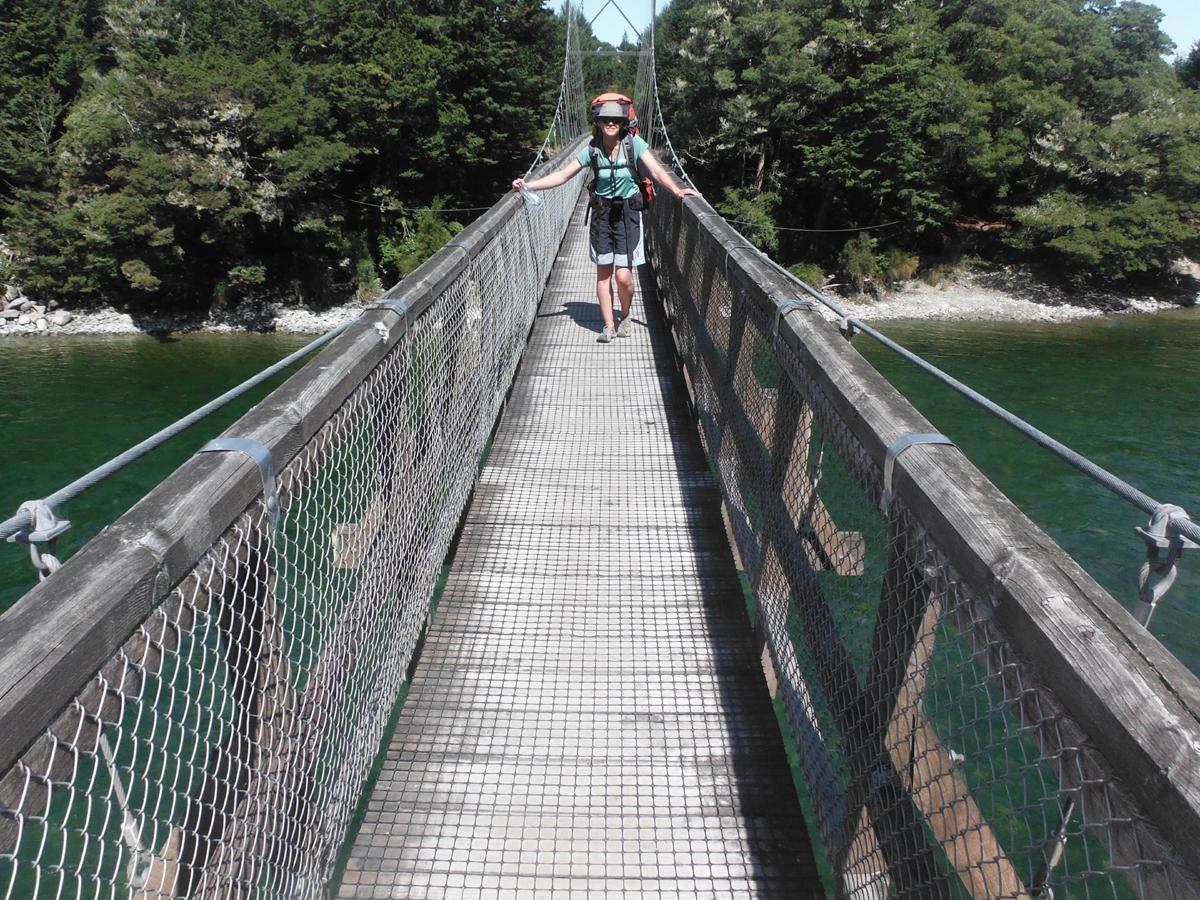 Kepler Track Half Day Guided Walk