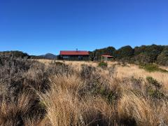 Heaphy Track 4 Day Guided Walk