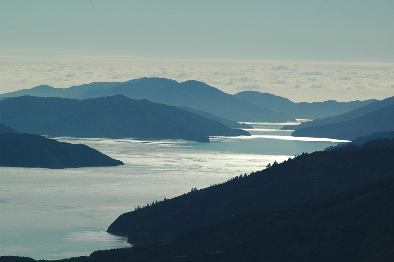 Queen Charlotte Track - 5 Day Standard Independent Walk - Furneaux Lodge, Punga Cove & Portage Hotel