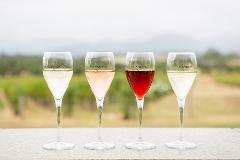 Gourmet Food and Wine Tour. Yarra Valley, Mornington Peninsula and Bellarine Peninsula 3 day tour