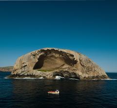 WILDERNESS AND WILDLIFE TOUR Phillip Island & Wilsons Promontory - Duration 2 days