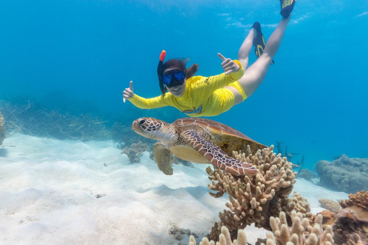 Ocean Rafting + Ocean Safari two trips deal