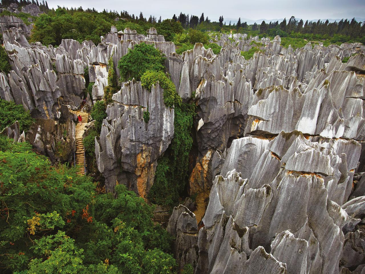 Private Journeys : Explore Nature