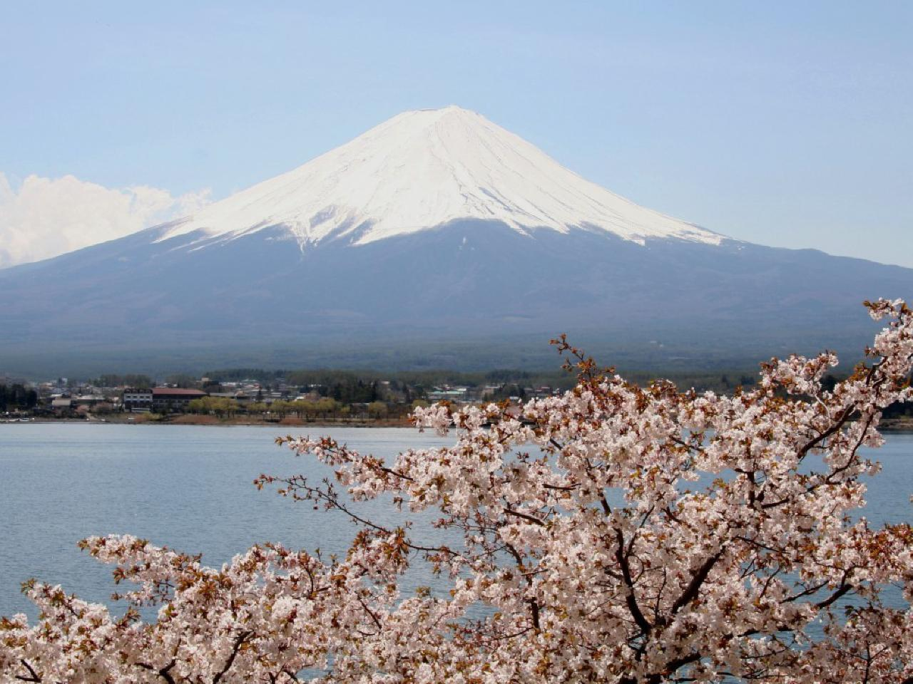 Group Journeys Bargain Escapes : Highlights Of Japan