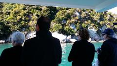 Experience the Abel Tasman Area by Land and Sea