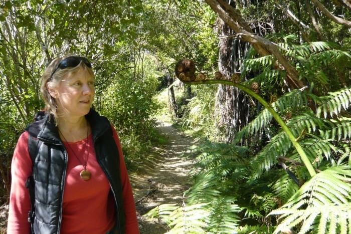 Abel Tasman and Golden Bay in One Day