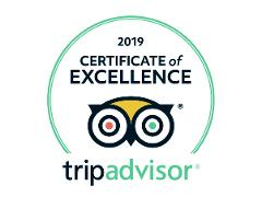 Tongariro Alpine Crossing: Turangi Round Trip Transfer -Self guide