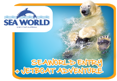 Seaworld & Broadwater Adventure - Premium ride - Live
