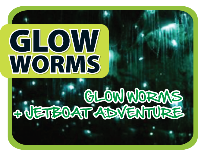 Jet Boat + Glow Worms with Southern Cross 4WD - Live