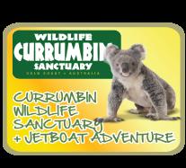 Jetboat + Currumbin Wildlife Sanctuary - Live