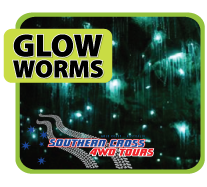 Jet Boat + Glow Worms with Southern Cross 4WD