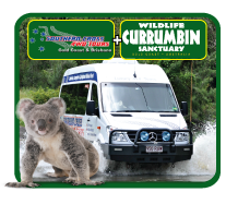 Jetboat + 4WD ½ day Tour + Currumbin Wildlife Sanctuary ...SAVE up to $24