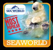 Seaworld & Broadwater Adventure - Premium ride