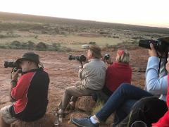 7 - Day Outback and Station Wildflower Tour