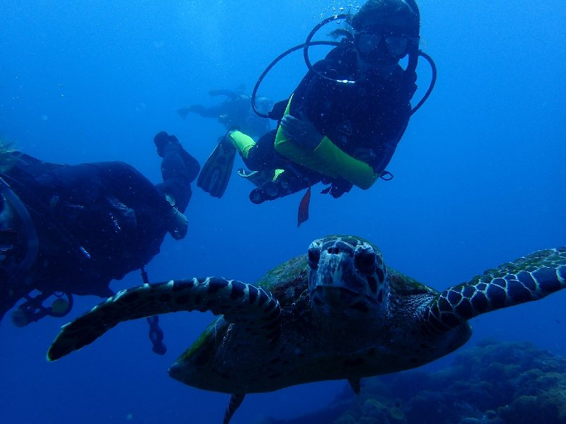 PADI  2 Day Advanced Open Water Course