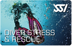 SSI 2 Day Rescue Course